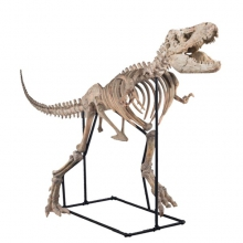 Sculpture dinosaure en résine sur support en métal 70-Tarbosaurus