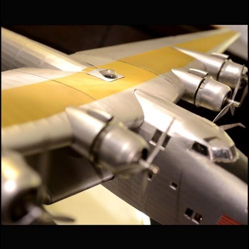 Toile 25-MVC  Le Lion
