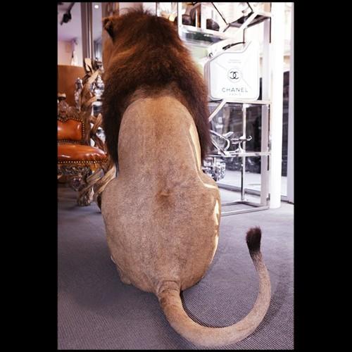 Set de 2 chaises avec tissu green ou rouge ou light-green ou violet ou noir 24-Filmore