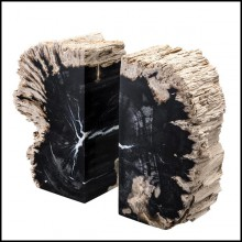 Bookend made of set of 2 petrified wood 24-Petrified Bookend