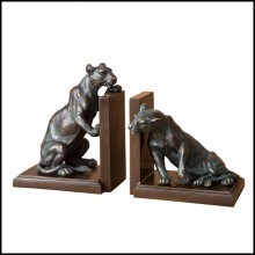 Serres livres lionnes en bronze massif avec finition patina 24-Lionnes