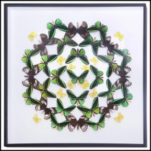 Wall decoration with natural butterflies from farms from Thaïland PC-Green Butterflies