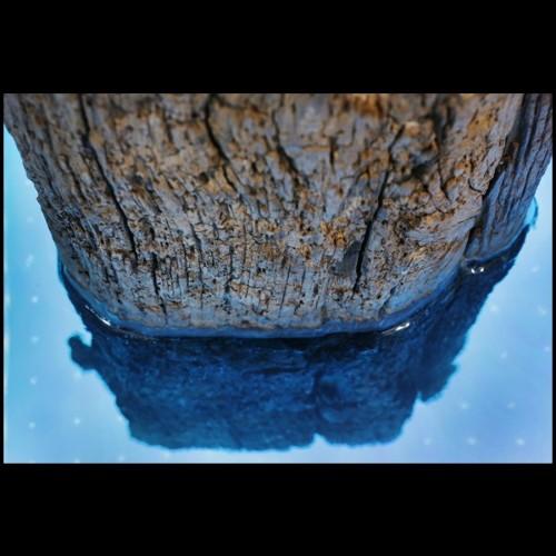 Table de repas avec plateau acier inoxydable et pieds chêne massif 152-Equinox
